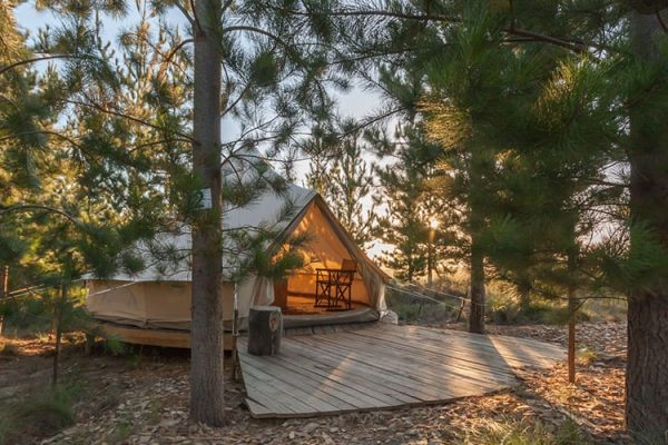 Elgin Cherry Glamping (Image: Supplied)
